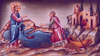 Photo of Λειτουργίες – Κηρύγματα Ιεράς Μητροπόλεως Πάφου