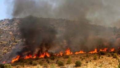 Photo of Πυρκαγιές στο δάσος Πάφου και στον Ακαμα