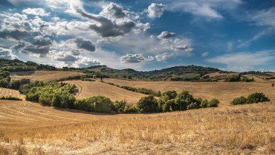 Photo of Στήριξη γεωργών