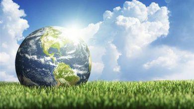 Photo of Ανακοίνωση του Γραφείου της Επιτρόπου Περιβάλλοντος κας Κλέλιας Βασιλείου