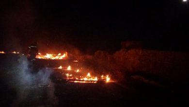 Photo of Φωτιά στην Λυσο