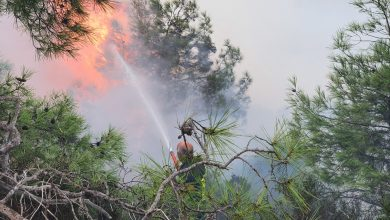 Photo of Πυρκαγιά στον Κάθηκα