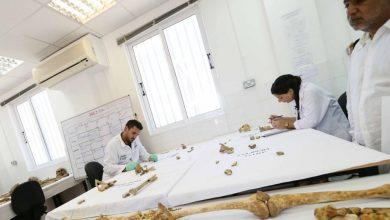 Photo of Βρέθηκαν τα οστά ήρωα της Χούλους