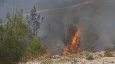 Photo of Ξανά πυρκαγιά στην Δρούσεια